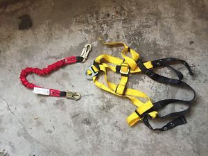 Standard Harness and shock absorb Lanyard