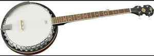 Looking for a cheap banjo
