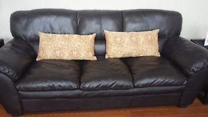 Two Decorative Pillows with removable pillowcase