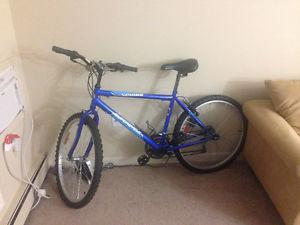 Mountain Bike Supercycle