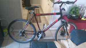 Triumph mens 18 speed mountain bike with accessories
