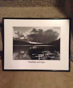 Waterlilies and light black and white framed picture