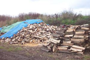 Firewood $235 + del We only sell 1+yr dried hardwood.