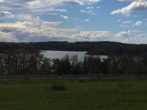 JACKFISH LAKE PROPERTY 4 acres