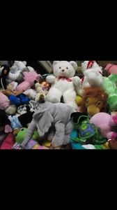 Wanted: ISO:stuffed animals