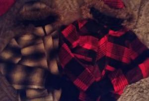 2 Brand New winter Coats