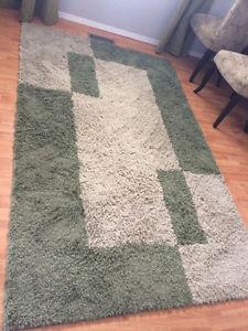 5x7 shag rug