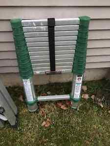 Telescoping Ladder, 12½-ft.