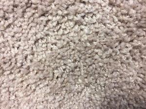 $2.99 CARPET ON SALE WITH FREE INSTALLATION