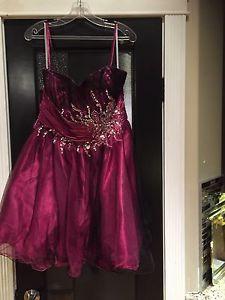 Grad Fuchsia Dress