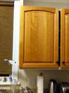 Solid birch kitchen doors with hinges and handles