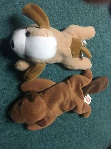 Beaver and puppy stuffed animals