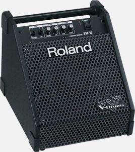 Wanted: *Looking for* Roland PM-10 V drum amp