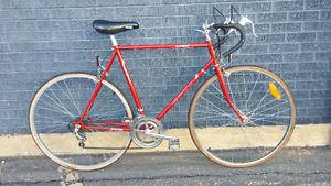 Pro Tour Road Bike