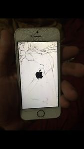 Looking to buy broken iPhones and paying top prices!
