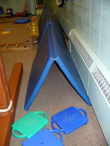Wanted: ISO folding gym mats