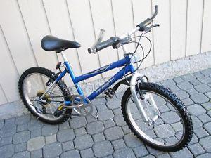 INTREPID Kids Bike - 20 Inch wheels