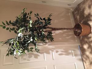 Artificial house Tree/plant