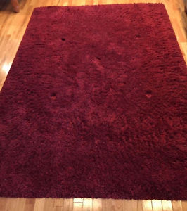 Beautiful Red Shag Rug