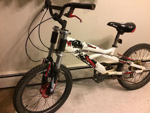 Boys Punisher 7 Spd Bmx mountain bike, (20 Inch tires)