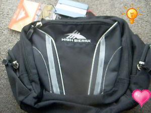 Hot Buy: High Sierra Envoy Lumbar Waist Pack-5 Zip Pockets