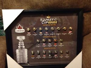 Molson Stanley Cup Rings in Custom Frame