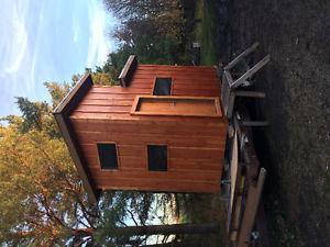 6x10 multi purpose shack