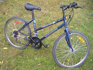 24 inch Vagabond bike for sale..