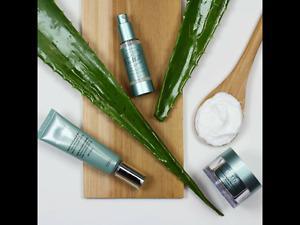 Aloette skin care and cosmetics