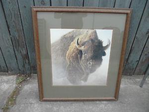 Robert Bateman Buffalo,  X 35.