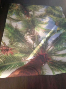 NEW PALM TREE RUG 5X7 INDDOR OUTDOOR RUBBER BACK