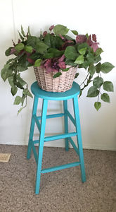 Stool plant stand & Plant