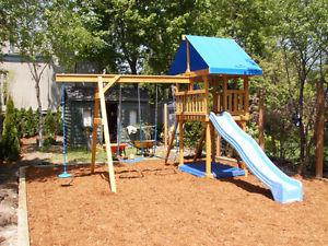 Wanted: looking for a swing set/play structure