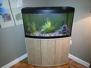 45 gallon fish tank with filtration system and fish.