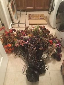 Assorted dry flowers