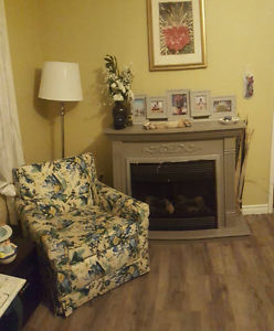 Faux Fire Place (was electric)