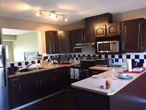 Cabinets from Kitchen Reno