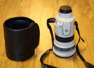 FS - Canon EOS EF  USM IS Iens and hood