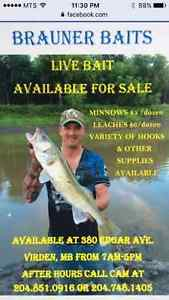 Selling minnows and more