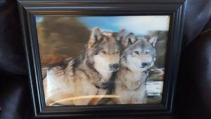 wolf picture just like new only 5.00