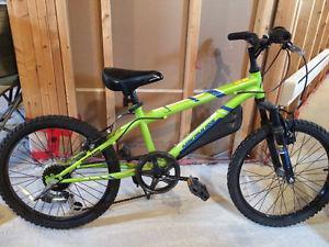 "Kids 20"" mountain bike for sale"