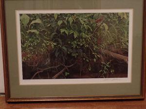 "Robert Bateman print ""Streambank -June"""