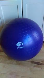 FT fitness Exercise Ball