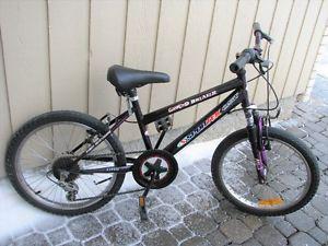 Wanted: SPORTEK Kids Bike - 20 Inch wheels