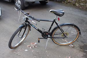 18 speed mens bike