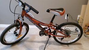 Boys 20 inch Raleigh 6 Gear Bike