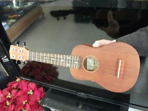 NEW! Ukulele & more musical instruments for sale. Great
