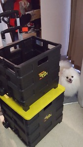 Quik Carts- 2 separate ones, also can be stacked