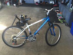 Infinity 12 Speed Mountain Bike