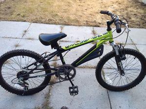 """Boys 20"""" Nakamara Mountain Bike - $150"""